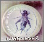 whatever_cdcover1997