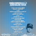 CharlieBurgess_2011_cdcover02