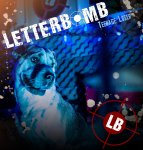 letterbomb_2013_cover