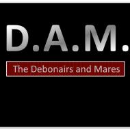 dam band_2019_logo