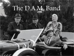 dam band_2019_pic